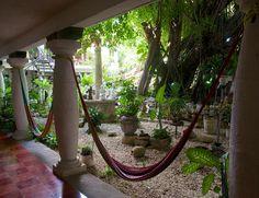 Get lost in nature lazing in one of our hammocks. Hammocks, Hostel, Outdoor Furniture, Outdoor Decor, Nature, Home Decor, Interior Design, Nature Illustration, Home Interior Design