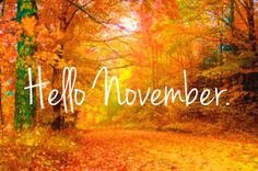 http://www.atvnetworks.com/ November 2014- Enter The Fall, and on to Winter...............Warm Thoughts  And Best Wishes To You.....Thanks For The Support.........Happy Holidays..Hope You Enjoy The Selections............J.