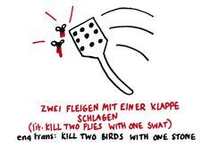 Zwei fleigen mit einer klappe schlagen/ kill two birds with one stone/ matar dos pájaros de un tiro.