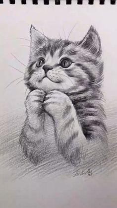 Amazing Pencil Drawings, Simple Animal Drawings, Creative Pencil Drawings, Amazing Sketches, Art Drawings Beautiful, Beautiful Sketches, Art Drawings Sketches Simple, Pencil Art Drawings, Cute Drawings
