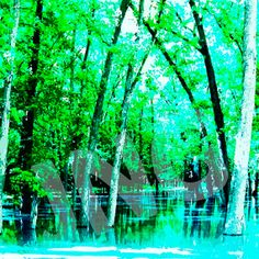 Trees in Water instant digital download art print by johnnovis, $3.00