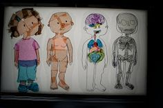 Pink and Green Mama: * Homemade Light Table Transparencies: Human Body Layers