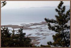 Coastal Wetland in Suncheon Bay, Korea