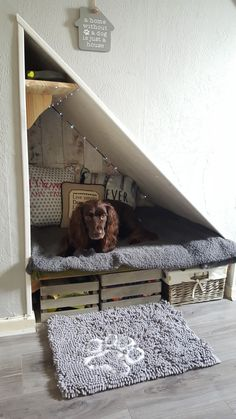 Under the stairs dog bed #DogArea
