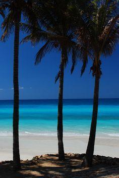 Things to do in Varadero, Cuba - wanderinggraceontravel.com
