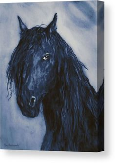 Black Velvet Acrylic Print by Faye Anastasopoulou. All acrylic prints are professionally printed, packaged, and shipped within 3 - 4 business days and delivered ready-to-hang on your wall. Canvas Art, Canvas Prints, Art Prints, Thing 1, Art For Sale Online, Horse Portrait, How To Make Paint, Picture Design, Wood Print