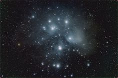 """The Pleiades (the Seven Sisters). Winner of the Young Astronomy Photographer of the Year 2012 competition. (Credit: Jacob von Chorus) The photo shows beautifully the star cluster and the blue reflection nebulae surrounding the hot young stars. ©Mona Evans, """"Astronomy Photographer of the Year 2012"""" http://www.bellaonline.com/articles/art178104.asp"""