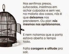 julho | 2015 | Brasília Nova Era | Página 24