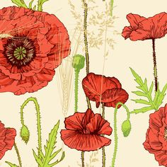 poppy fabric by veraholera on Spoonflower - custom fabric