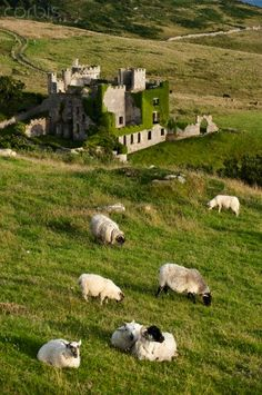Republic of Ireland, Galway County, Connemara, castle at Clifden