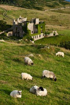Clifden Castle, Connemara, Galway County, Ireland