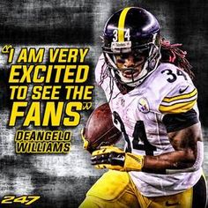 3aa16bb55 53 Best Steelers Nation images