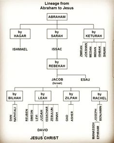 Abraham's Family Tree chart that we are a part of through Joseph. Bible Teachings, Bible Scriptures, Bible Quotes, Tree Quotes, Book Of Romans Bible, Revelation Bible, Christ Quotes, Father Quotes, Bible Study Notebook
