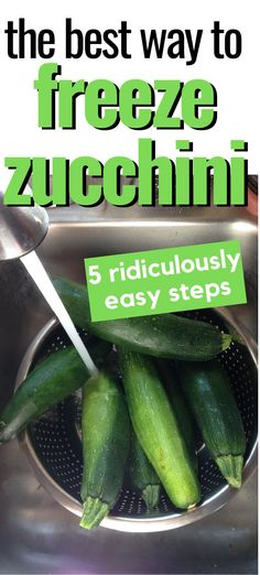 If you have more zucchini than you can handle you may need to find a way to store it. This is a great guide to learn how to freeze zucchini. Preserving Zucchini, Canned Zucchini, Zucchini Slice, Zucchini Noodles, Freezing Vegetables, Fresh Vegetables, Fruits And Veggies, Freezer Cooking, Freezer Meals