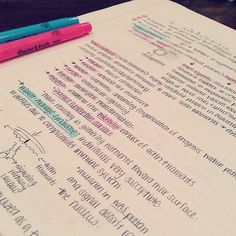 "amnafbaby: "" my Biochem lecture notes #studyblr #studyspo #study """