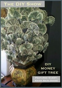Money Tree (Type money Tree into search when page loads and will bring u to instructions)