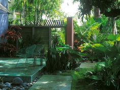 A Key West garden is a private jungle with tree ferns, banana plants, bamboo, palms, alocasia, sansevieria and grasses.