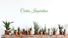 E' sempre più Cactus