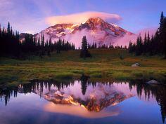 Mt. Rainier, Washington - USA