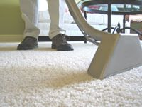 Australian Cleaning Force-offering Professional Carpet steam cleaning Perth spreads Carpet Cleaning, Upholstery Cleaning