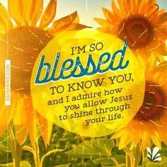 Jesus Shines