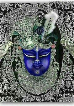 shreenathji- Glitters