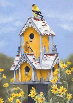 goldfinch on birdhouse