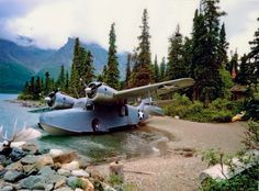 Beached Grumman Ww2 Aircraft, Amphibious Aircraft, Military Aircraft, Aviation Art, Fighter Jets, Sea Planes, Bush Plane, Float Plane, Flying Boat