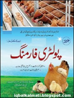 Get free PDF copy and literature for Domestic Poultry Farming book in the Urdu, An information about desi chicken production in Pakistan. Free Books Online, Free Pdf Books, Reading Online, Free Ebooks, Farming Guide, Farming Ideas, English Speaking Book, Best Urdu Poetry Images, Animal Nutrition