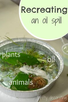 Thrifty Decorating: Homeschooling: Cleaning up an oil spill