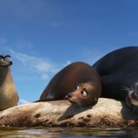 Gerald is a sea lion that appears in the 2016 Disney/Pixar film Finding Dory. A running gag is...