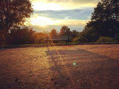 New photo online Herbst  #autumn - #potsdam #fall #nature #naturelovers #warmcolors #herbstfarben #herbstfarben #babelsberg #parkbabelsberg #wirliebenpotsdam #welovepotsdam #herbst #herbst2016 #autumn2016 Hope you like it