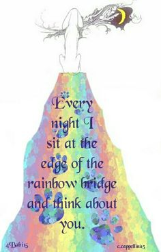 ♡ Every night I sit at the edge of the Rainbow Bridge and think about you ♡
