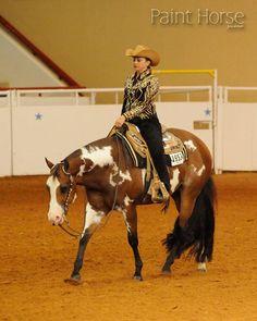 My dream horse <3