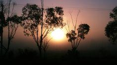 Buen día hoy amaneció con algo de neblina - Rawson Chubut Argentina.-