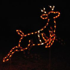 LED Animated Lead Reindeer Display - the first reindeer in our large Animated Santa, Sleigh & Reindeer set.  HolidayLights.com