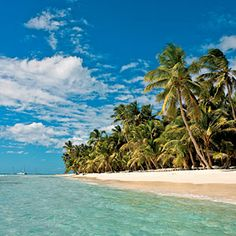 Best beaches to go for a swim: Key Biscayne, FL to Kiawah Island, AC to Saona Island, Dominican Republic Samana, Punta Cana, Dream Vacations, Vacation Spots, Beach Vacations, Girls Vacation, Oh The Places You'll Go, Places To Visit, Cap Cana
