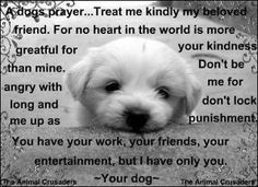 A Dog's prayer