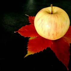 Pomme effeuillée