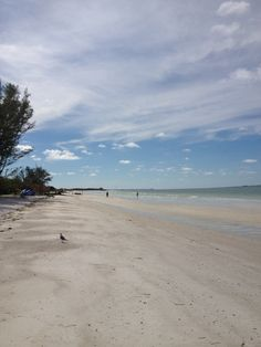 In 2005, Dr. Beach named Fort De Soto's North Beach the #1 Beach in America. You can see why. #50Views