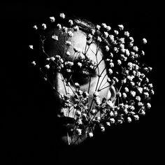 Jonė Reed Photography https://www.facebook.com/jonereedimages/photos_stream