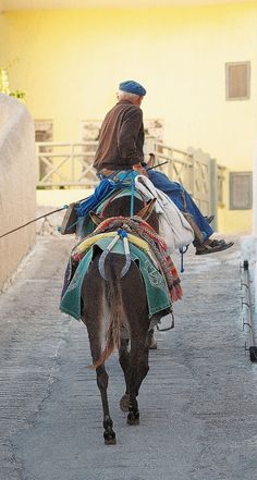 Going Home, Santorini, Greece. My Father wouldn't go up on the donkey, he took the lift instead.