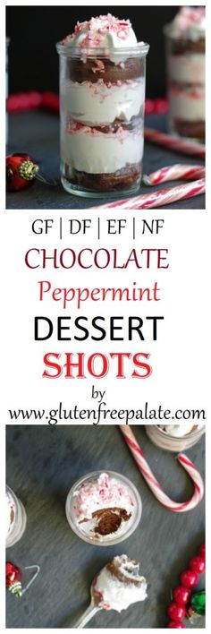 Dip your spoon into a simple, yet sophisticated Gluten-Free Chocolate Peppermint Dessert Shot. The combination of chocolate, peppermint whipped cream, and candy cane will have you reaching for seconds.