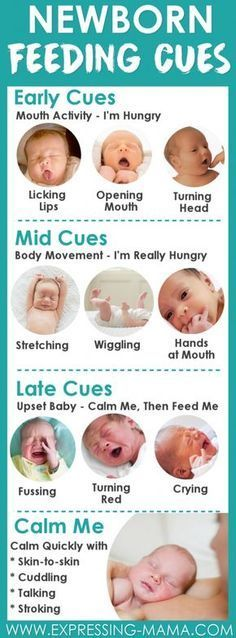 Newborn baby health largely relies on feeding. Feeding cues like the ones illustrated below can help you determine when to feed your baby. This is especially helpful for first time moms. Here's a useful baby health tip for new moms feeding their babies by breast of by bottle. #babyhealth #babyhealthtips #healthybaby #babyhealthcare #newbornbabyhealth