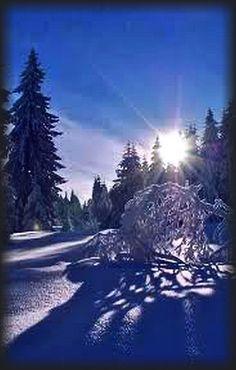germany bavaria - snow winter sunset sky blue tree forest