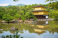 Golden Temple in Kyoto Japan Photograph by Severine Photography. Golden Temple, Fukuoka, Kyoto Japan, River, City, Reflection, Pictures, Photography, Photos