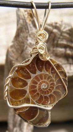 Ammonite Fossil stone pendant - interesting shape and color.