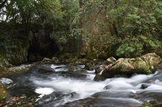 La Fuente del Frances, Hoznayo