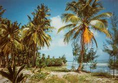 Zanzibar Eastcoast, Bwejuu