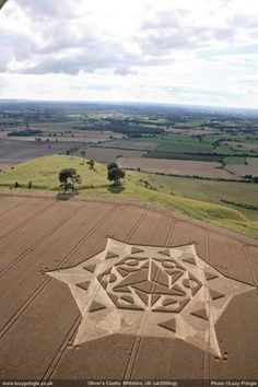 Lucy Pringle's Crop Circle Photograph Library : Oliver's Castle, Wiltshire, 2008